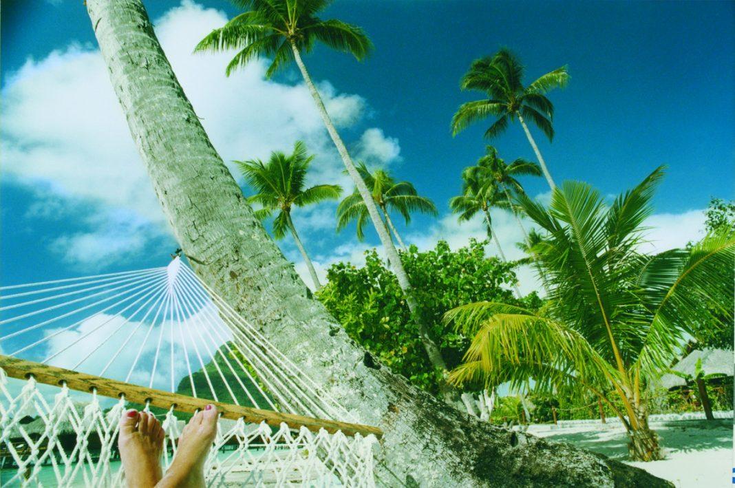 Kochbücher für den Sommer - Sehnsuchtsorte ganz fern - Träumen unter Palmen