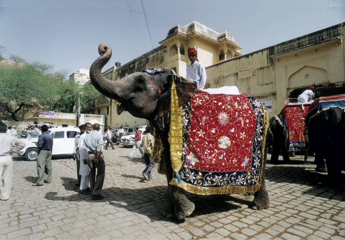 Sehnsuchtsorte Jaipur Indien