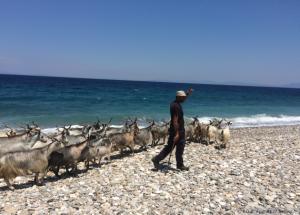 Wanden auf Samos