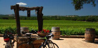 Weinkultur auf den Balearen