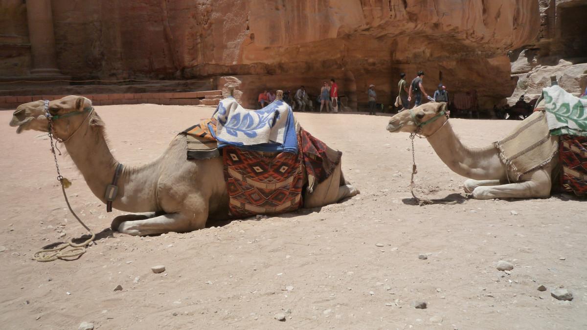 Rätselhafte Felsenstadt Petra