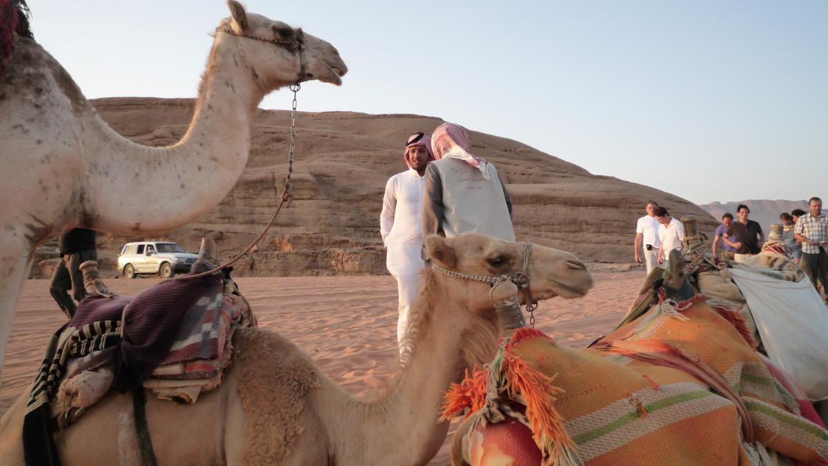 Wadi Kamele 2