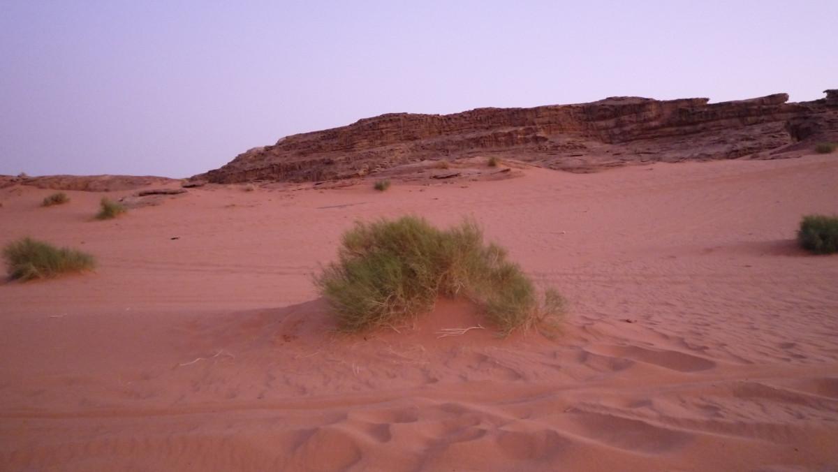 Im Reich der Wüstensöhne Jordanien Wadi Rum