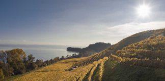 Westschweizer Ferienregion Jura & Drei-Seen-Land