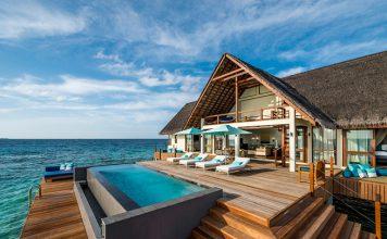 Manta-Spotting in den Malediven