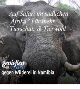 Tierschutz und Tierwohl in Namibia