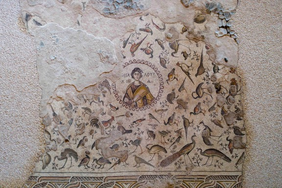 """Hautnah kann eine 23 Jahrhunderte alte Geschichte """"erlebt"""" werden, denn eindrucksvolle archäologische Funde aus 13 verschiedenen Zivilisationen und Kulturen entdecken die Gäste """"im Vorbeigehen"""". Neben demerstaunlichen römischen Bodenmosaik aus dem 4. Jahrhundert, welches zuvor der Boden eines Villenforums war, befindet sich auch ein seltenes Pegasus-Mosaik und eine Marmorskulptur des Eros."""