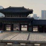 Südkorea: Vor-Ort-Recherche