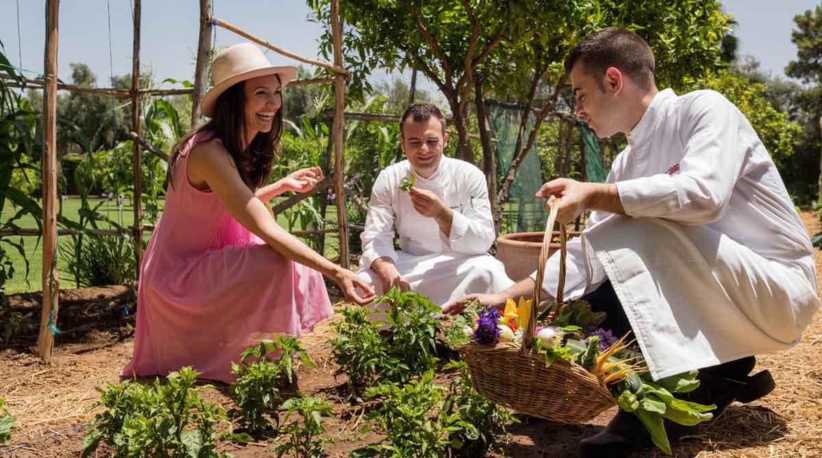 Tipps für den eigenen Garten aus dem legendären La Mamounia