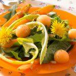 Löwenzahnsalat mit Melone