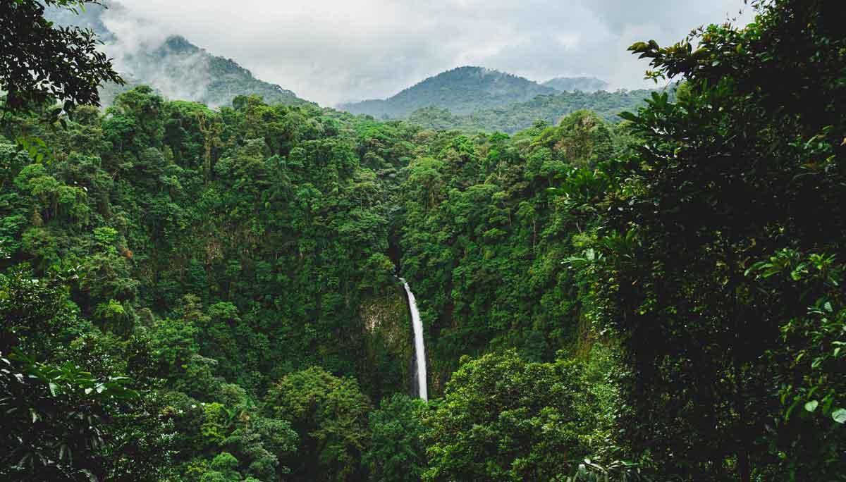 Savanne, Inseln oder der Himalaya: die schönsten Ausblicke zum Träumen