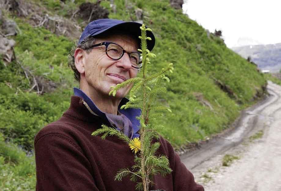 Genussmomente in der Natur Baumhausaperitif mit Weitblick