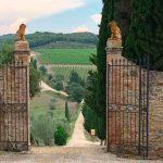 Reise zum Wein Toskana