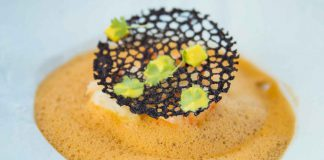 Fischcremesuppe mit Hummer
