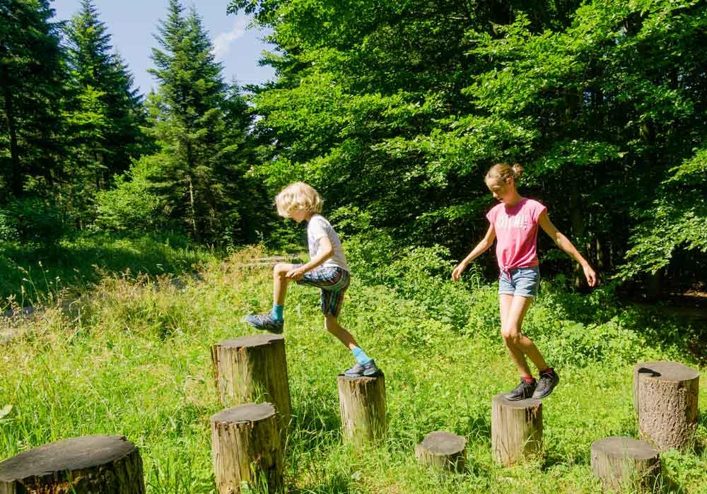 Auf Erlebnistour im Nördlichen Schwarzwald